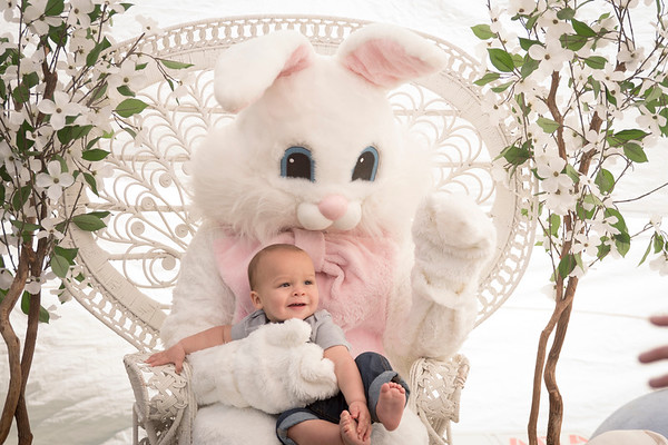 Easter Bunny Portraits from 3:00 to 4:00