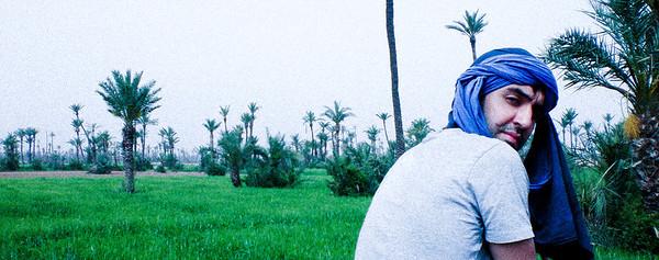 anil on camel