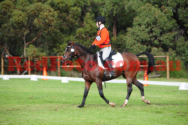 2014 06 22 Wallangarra Training ODE 1 Dressage