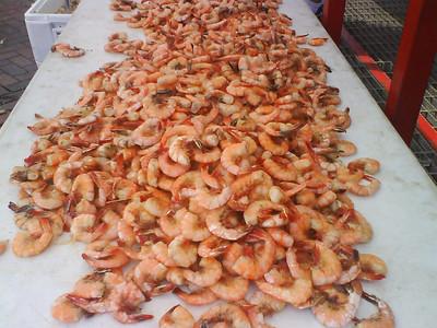 04-25 - Crawfish & Shrimp Boil - Smyrna Market Village - Smyrna, GA