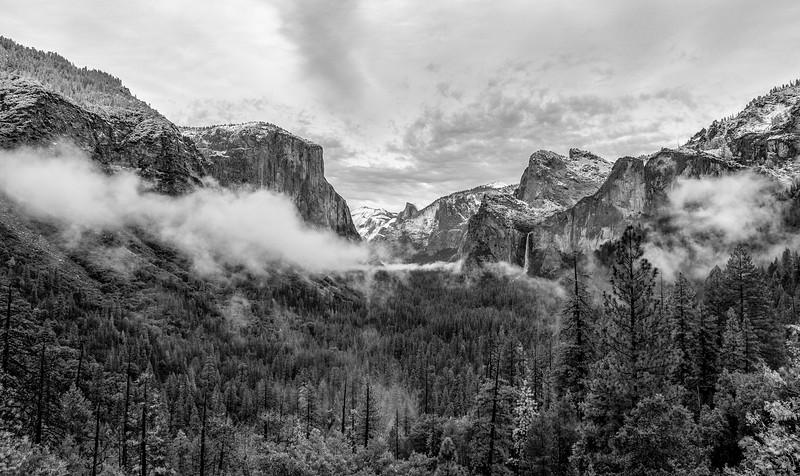 yosemite and sequoia-6060.jpg