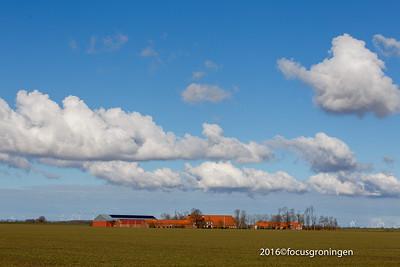 Groningen Provinciale - Aktiviteiten