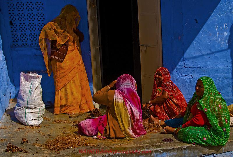 India2010-0211A-430A.jpg