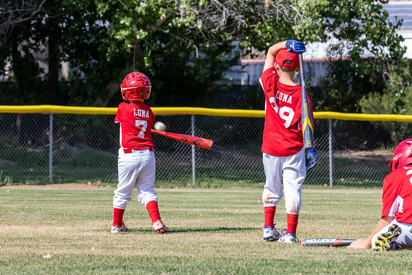 Chase and Parker Baseball 6-2019