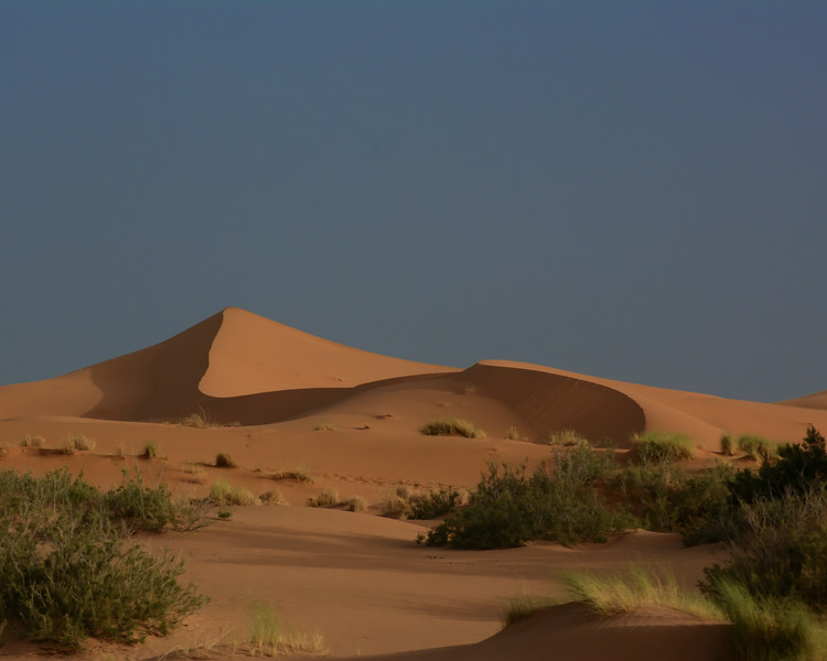 T2861 Morocco