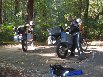 Redwoods 7.09