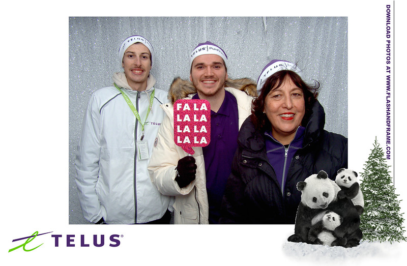Penticton Light Up Telus