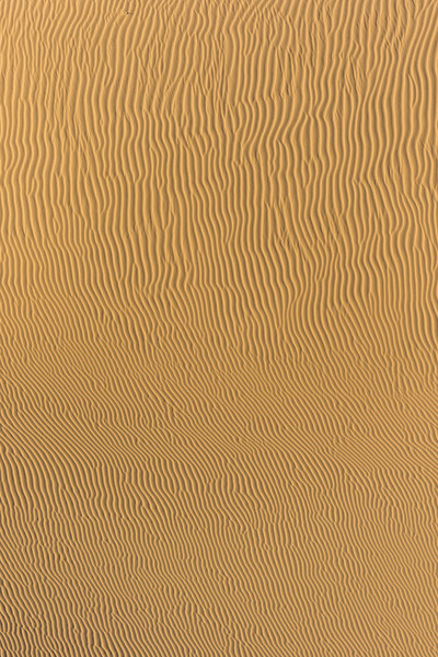 Waving patterns of sand down the side of a dune approach the viewer