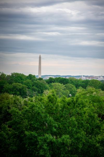 Arlington-270.jpg
