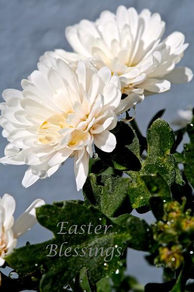 Easter Blessings a.jpg