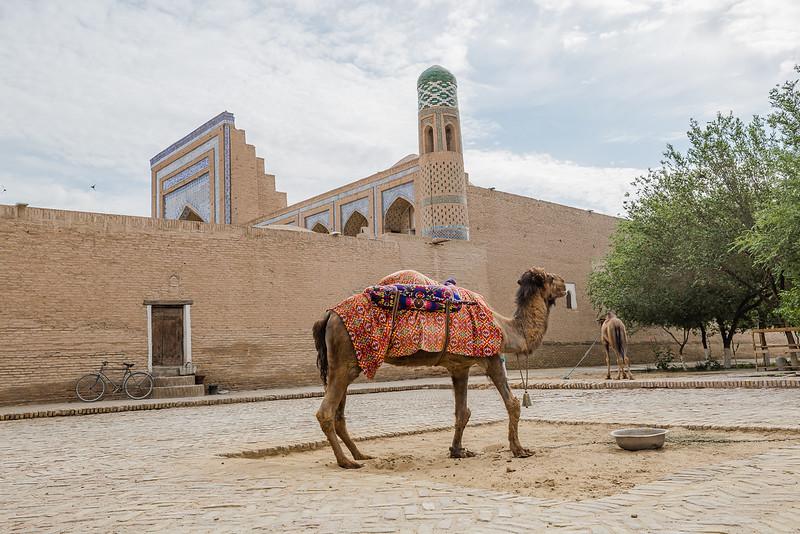 Khiva - Uzbekistan Travel