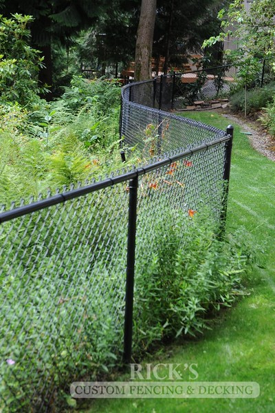4121 - Black Chain Link Fencing