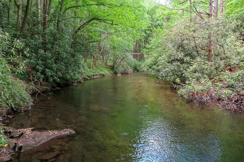 South Fork Mills River -- 2,310'