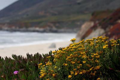 Big Sur CA
