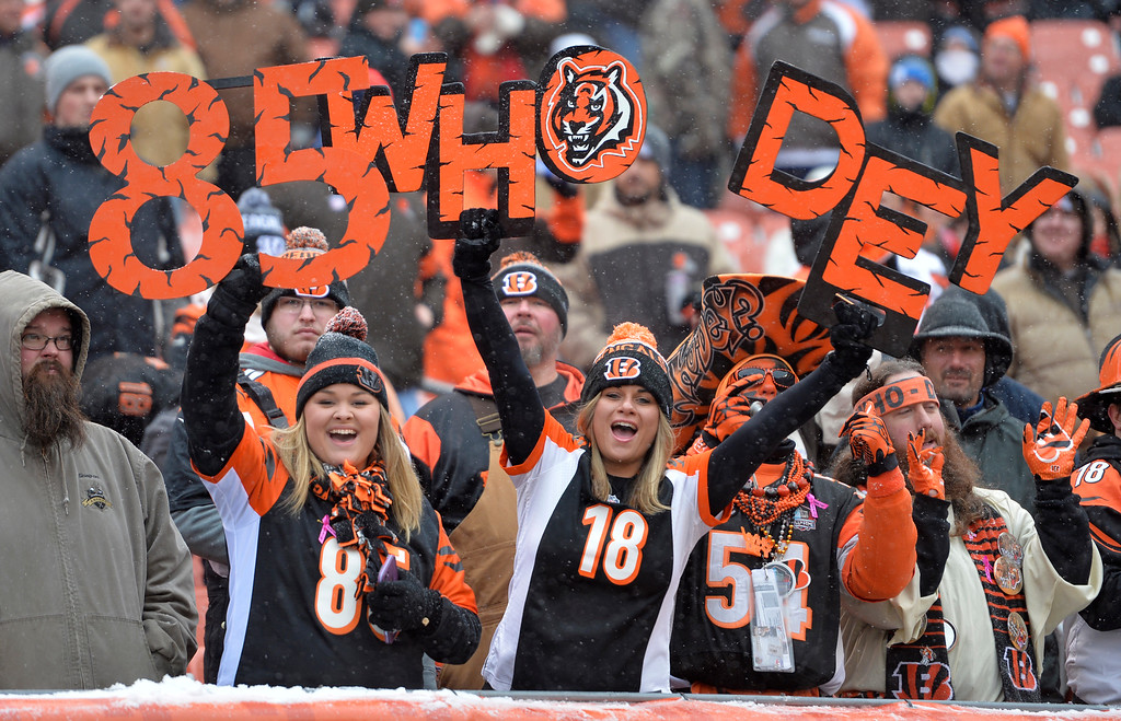 . Cincinnati Bengals fans cheer before an NFL football game between the Cincinnati Bengals and the Cleveland Browns, Sunday, Dec. 11, 2016, in Cleveland. (AP Photo/David Richard)