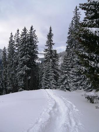 Winter Snow in the Alps - November 2008