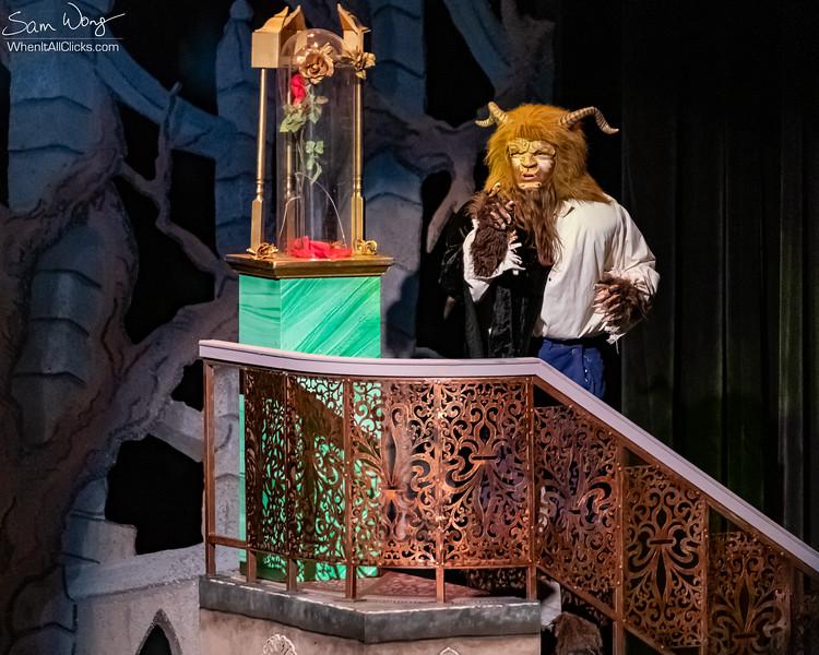 Beauty and the Beast 2018-11-08-65106.jpg
