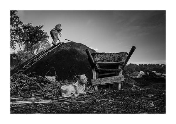 Countryside soul: rural Cuba (b&w)
