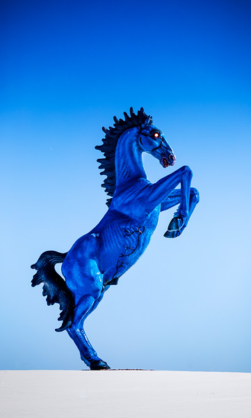 021120-Mustang-012.jpg