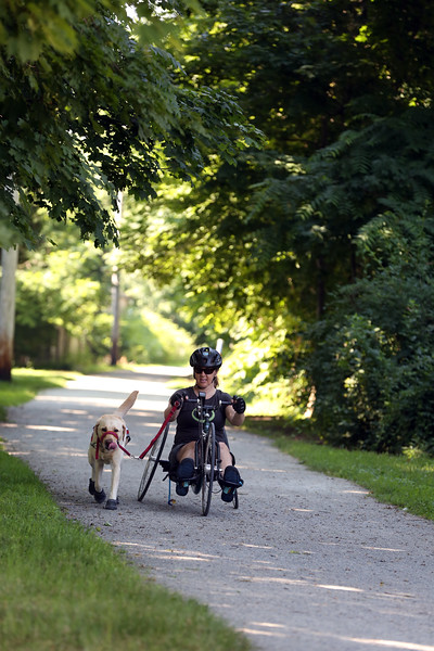 AMY SWEENEY/Staff photo.   Earle, a yellow Lab, trots next to Chris Slavin on her bike as the Danvers Rail Trail. June 2018​