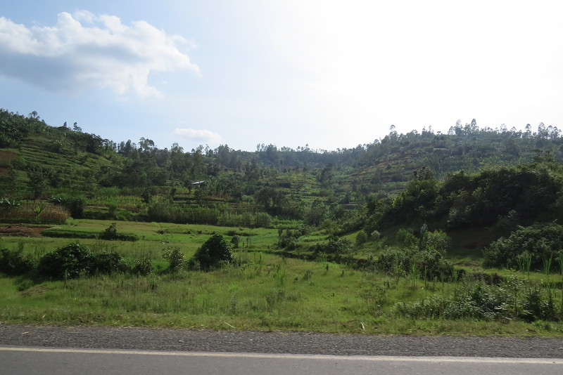 Tanzania 2016 137.JPG