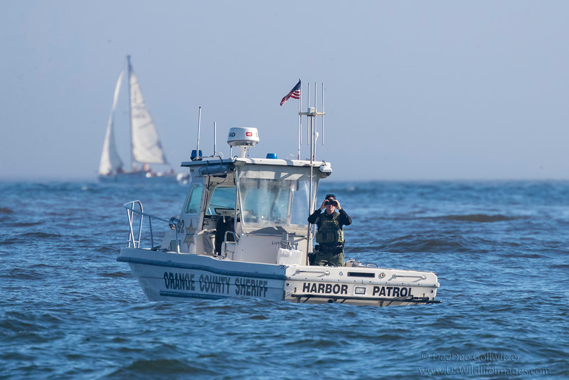 Sheriff_Boat_White_2_EO9I9624.jpg