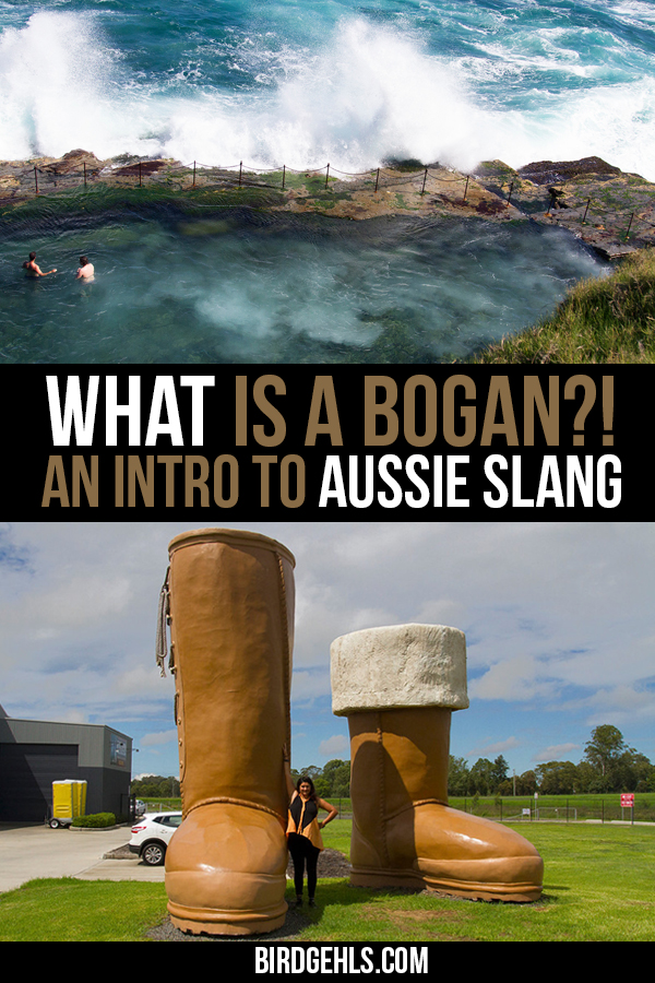 What is a bogan? A deadset dole bludger in trackie-daks and thongs? Have no idea what that sentence means? Fair call. Read on if you want a thorough understanding of #Australian slang.