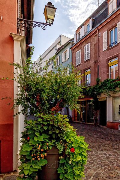 A Colmar Corner