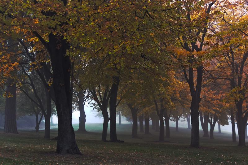 Fog_Minnehaha1_HDR.jpg