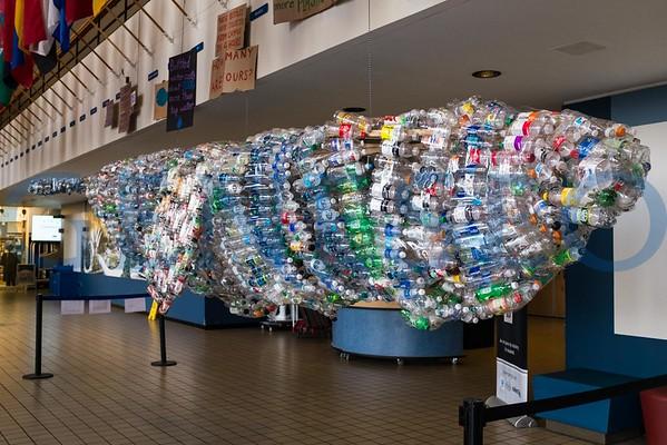 GEO Plastic Whale
