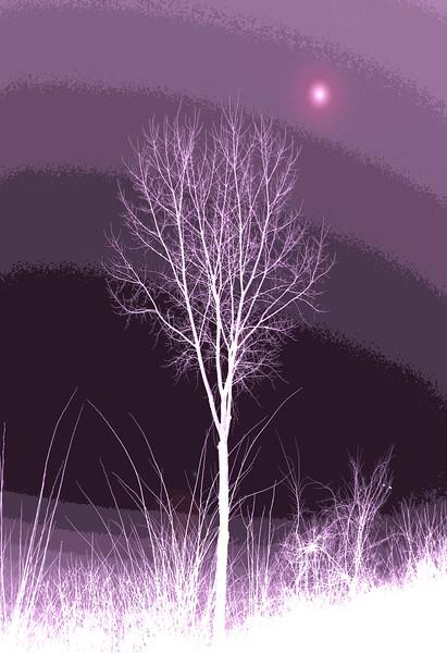 Tree  with purple gradient .jpg