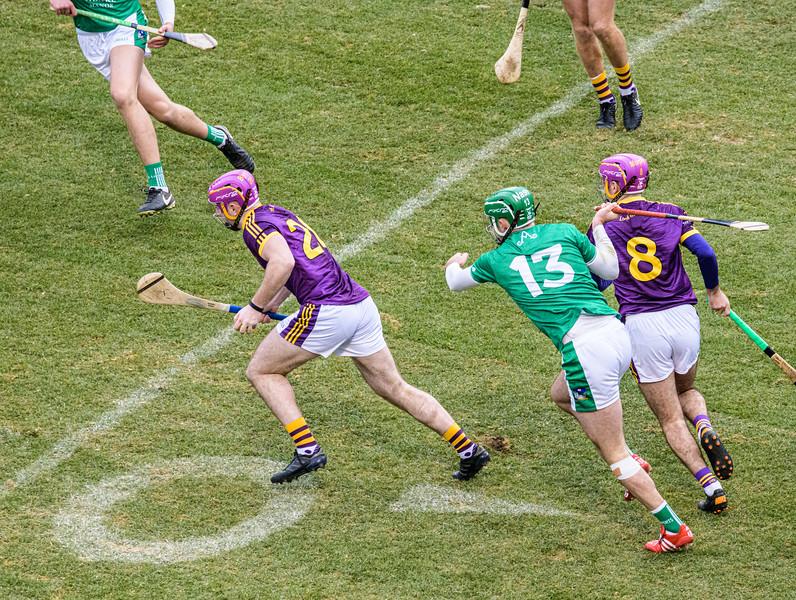 2018 Limerick vs Wexford -_8503697.jpg