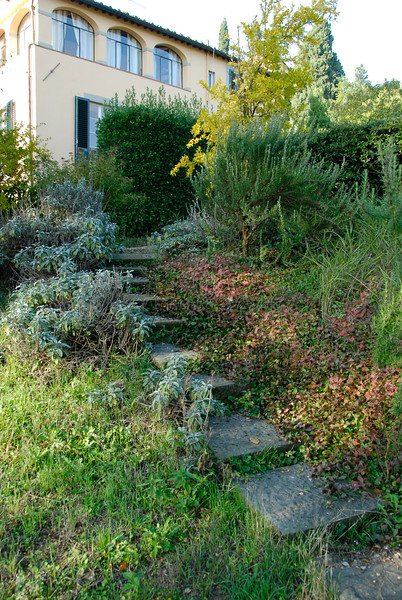 Inspiration for our patio steps