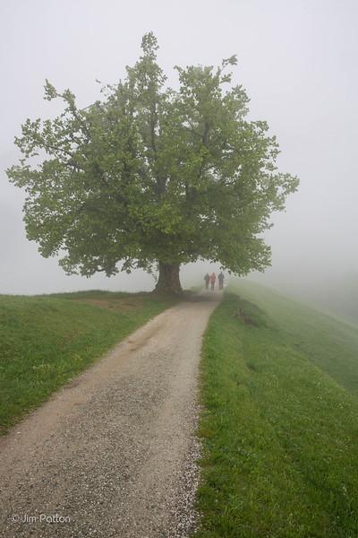 20150503_Slovenia_5007.jpg