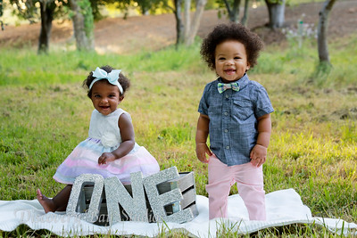 Twins First Birthday Shoot 5-8-2020