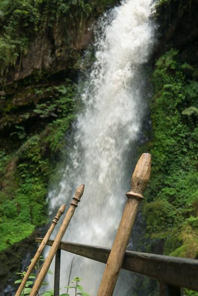 Nyugwe-Rwanda-47.jpg