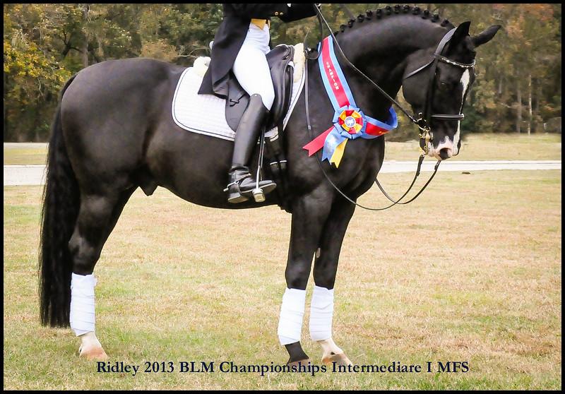 ridley BLM championships I1 (3).jpg