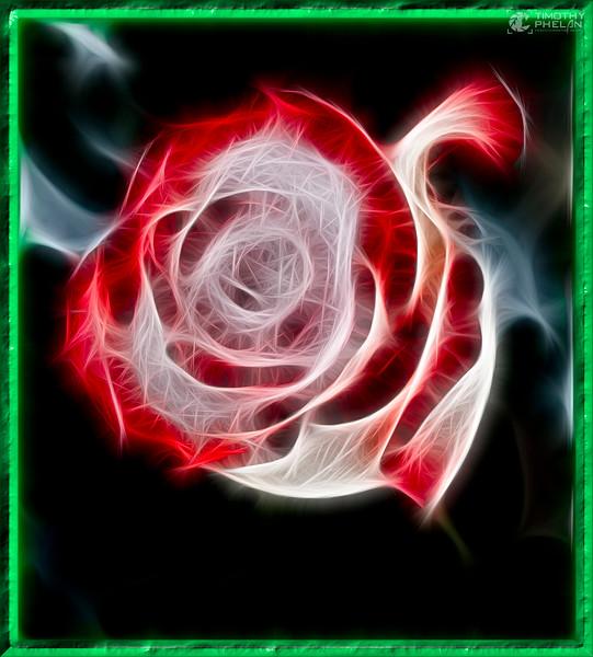 DSC_4798-Edit4.jpg