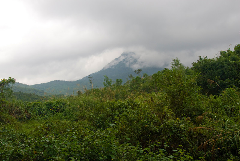 View of clouds covering the mountain - My Son Sanctuary, Vietnam