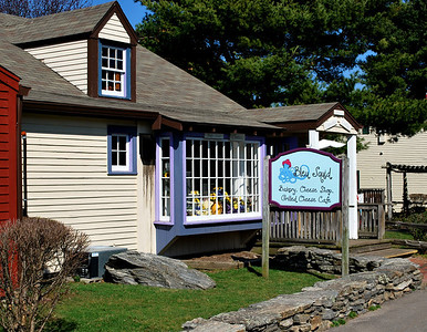 Bleu Squid Bakery & Cheese Shop