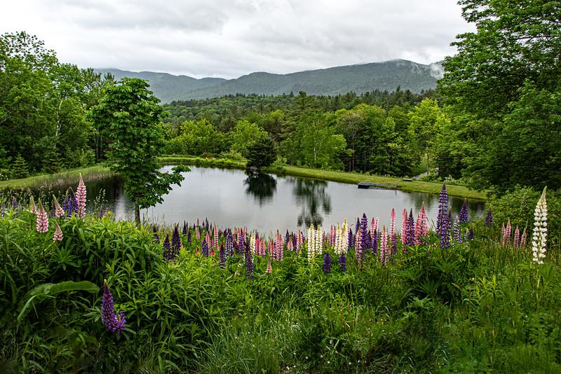 VermontFri-476-Edit.jpg