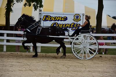 Ladies Cart