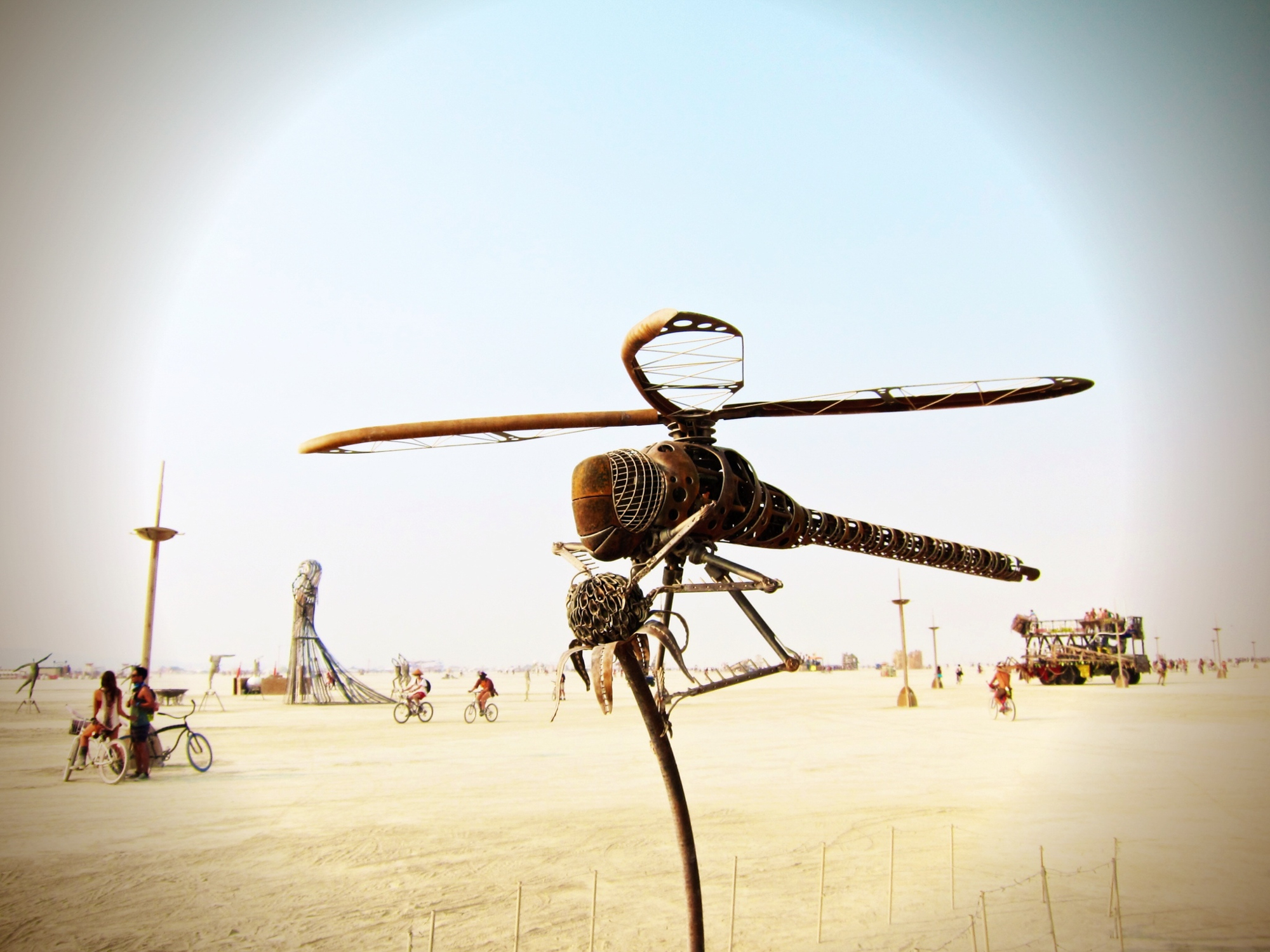 Dragonfly Art at Burning Man