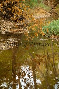 Banita Creek098