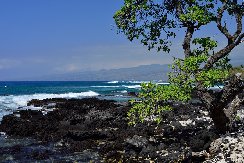 2017-Hawaii_051.jpg
