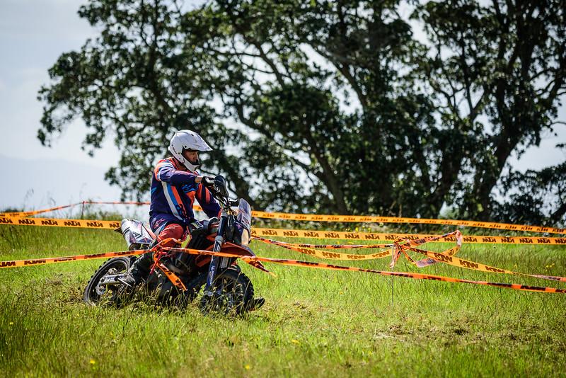2018 KTM New Zealand Adventure Rallye - Northland (560).jpg