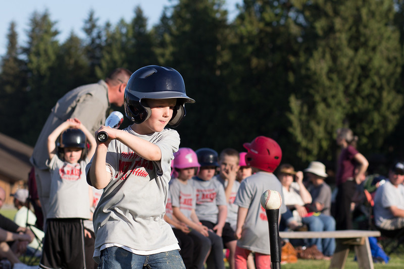 T-Ball May 2014 (10 of 103).jpg