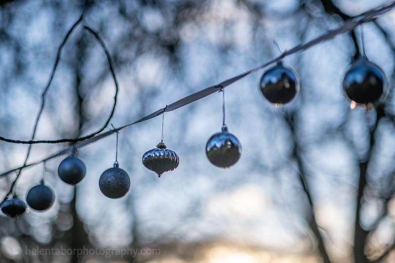 Winter Wonderland daytime-36.jpg