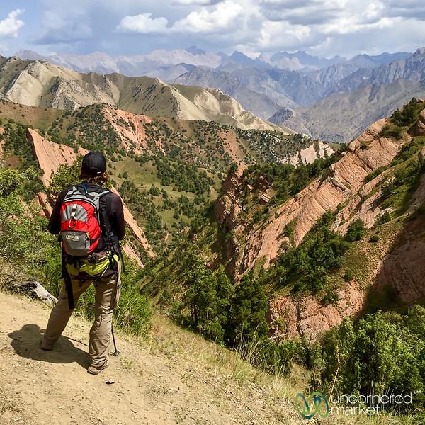 HeightsofAlay_Trek_Kyrgyzstan_46.jpg