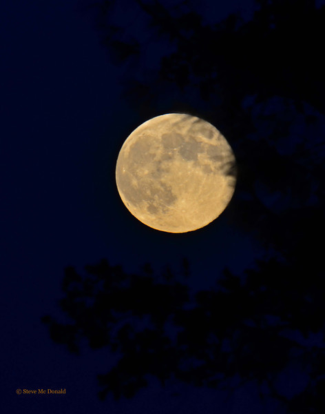 Blue Moon August 2012